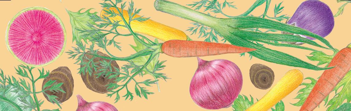 無農薬野菜の宅配・通販